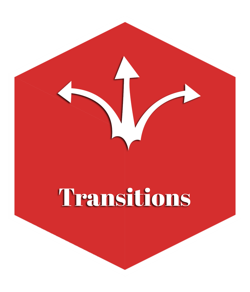transitionscopy 1